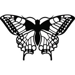 Fluture de noapte sculptat din placaj L 420X 257 mm LEOPARTID